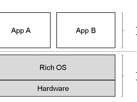 Why do we need Rich Operating Systems for IoT Security?