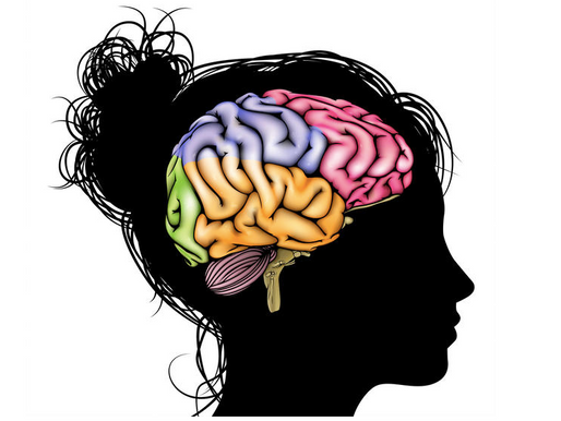 Unique Activation in The Brain During Female Orgasm