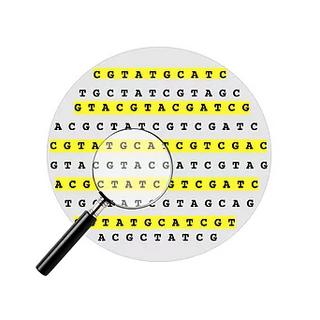 Transcriptional Gene Signatures