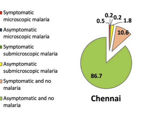 A Life-Threatening Disease from a 2-Milligram Bug: Submicroscopic Malaria in India