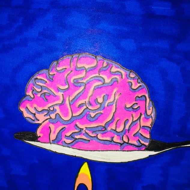 Heroin and Brain Temperature