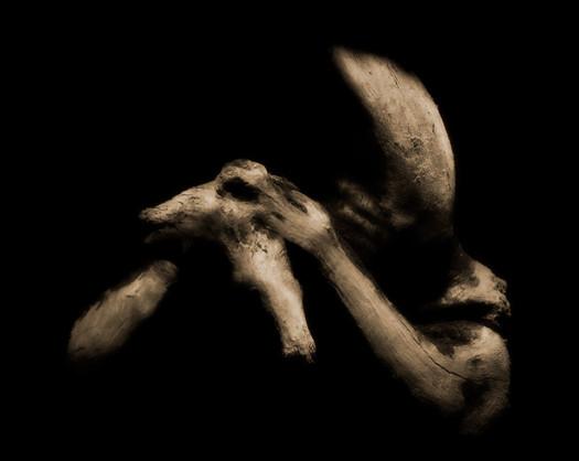 the-Reapers-Pet-1.jpg