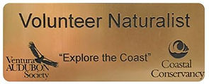 VolunteerNaturalist_NameTag.jpg