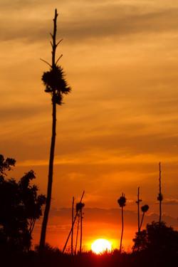 W01_1000_Sunset_mg12a-1119