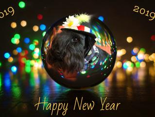 Wir wünschen allen Mitgliedern des Hundesportvereins Oldenburg-Wildenloh und deren Familien einen gu