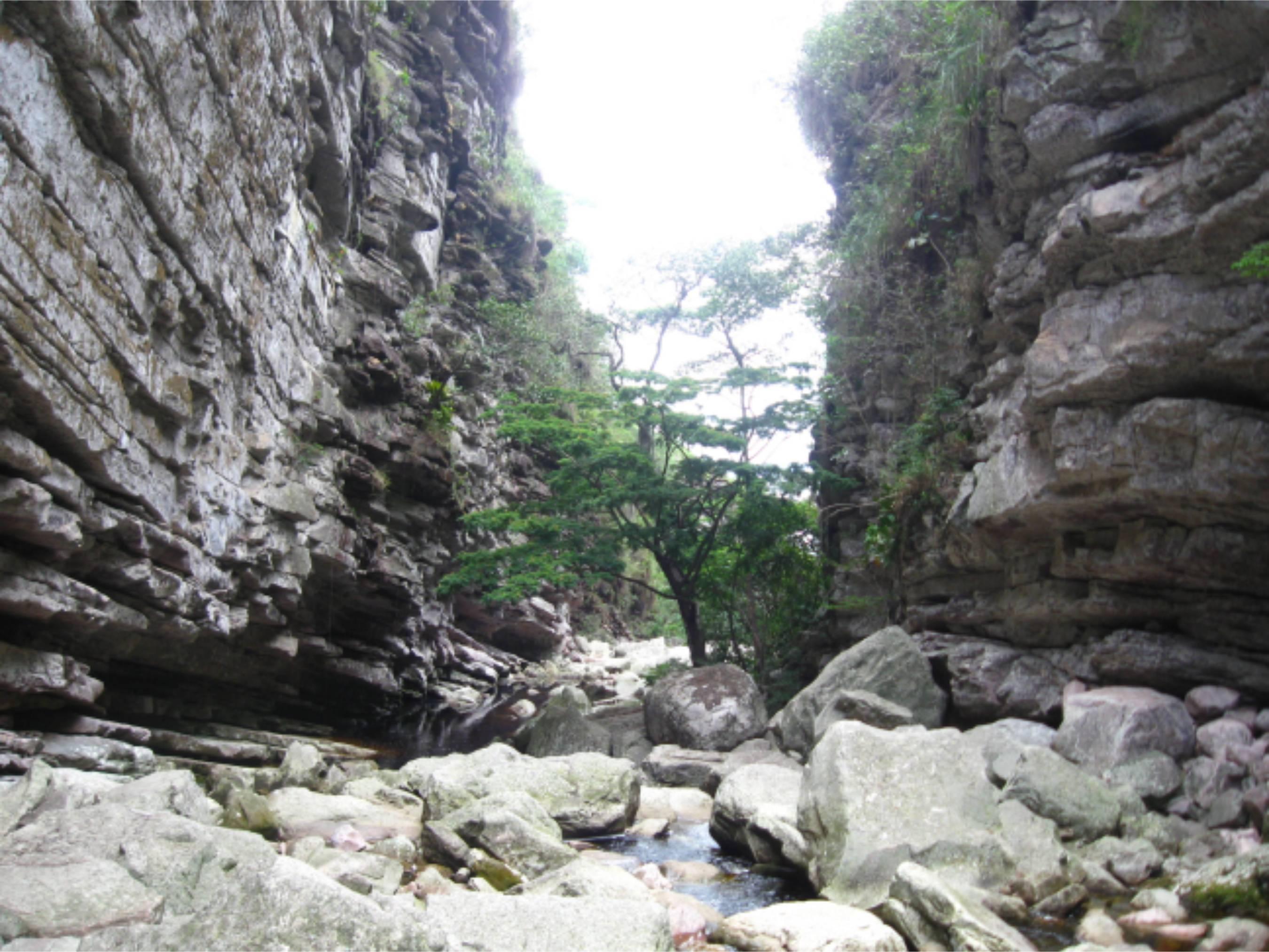 Caminho para a Cachoeira do Sossego