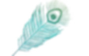 KATPOT%25252520-%25252520FILES-06_edited