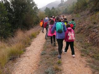 EL HAYEDO DE PENCHES