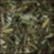 citron. tráva.jpg