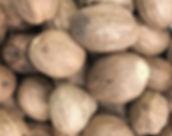 Muškátový ořech.JPG