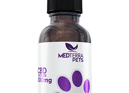 MedTerra CBD Tincture Chicken 300mg