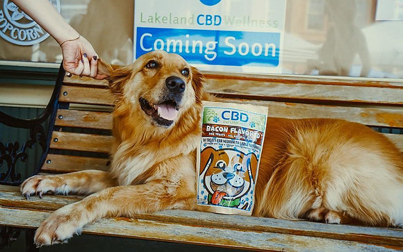 CBD Infusionz Bacon Flavored Dog Treats 250mg