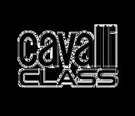 brands_cavalli-class-logo-300x258.png