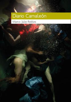 Diario Camaleón