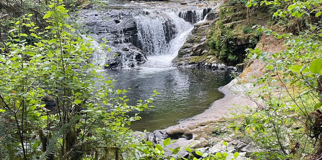 Sweet Creek Falls, Siuslaw Natl. Forest, Oregon