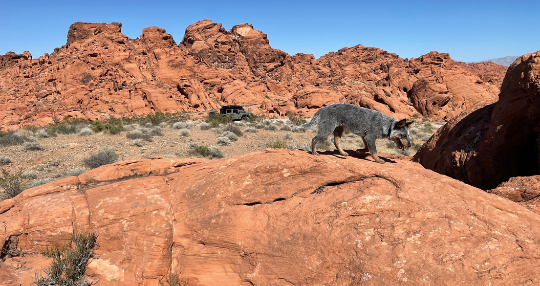 Valley of Fire, State Park, Nevada