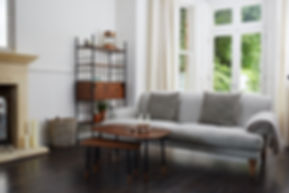 Alexander Mueller Furniture.jpg