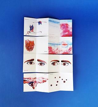 Flamingo_book_3 - katerina theodorou.jpg