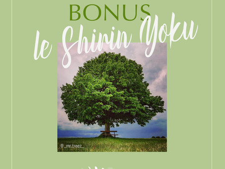 le shirin Yoku, podcast Lunatiq