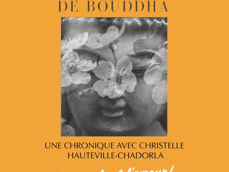 Sur les traces de Bouddha, une chronique proposée par Christelle Hauteville-Chadorla