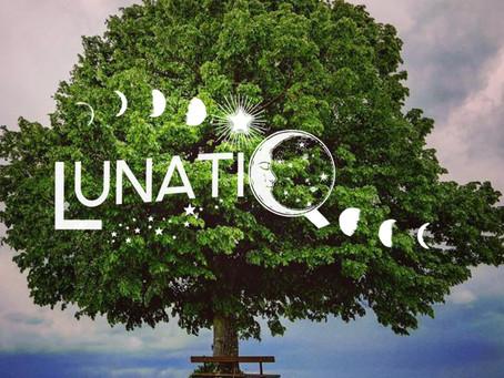 #29 EM - L'ecopsychologie et notre lien à la nature .