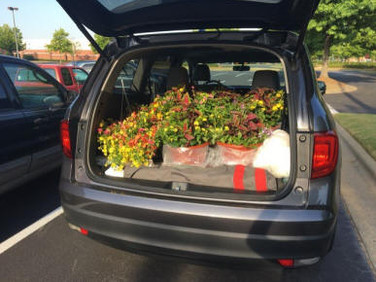 Su's car is packed for deliveries.