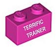 Terrific_Trainer_2019.png