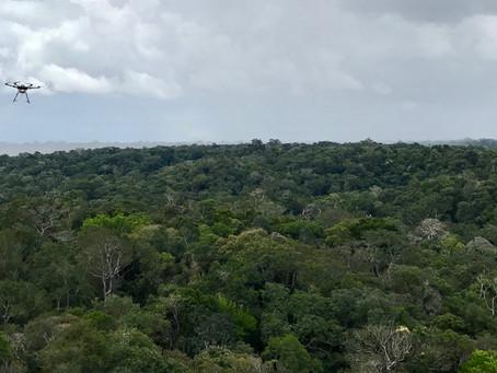 4 Keunggulan Drone DJI Enterprise untuk Cegah Kebakaran Hutan