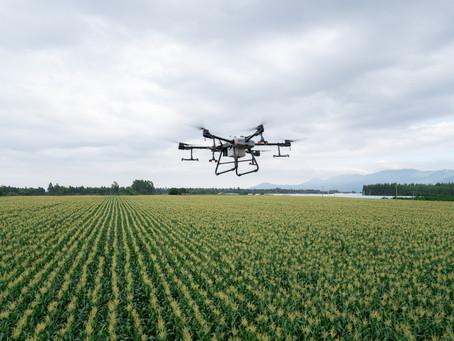 Spraying Drone DJI Agras T30: Solusi Pertanian Efisien di Berbagai Tipe Lahan dan Tanaman