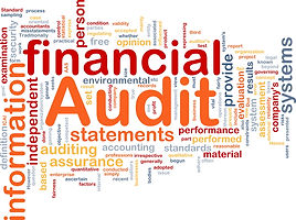 PCLG Audit and Assurance