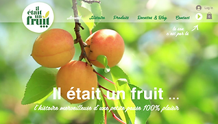 site_internet_à_nimes_agence_web.png