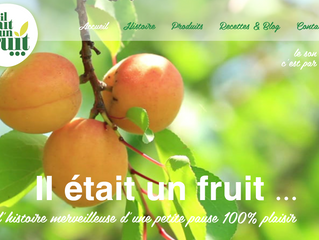 Découvrez le site internet d'il était un fruit créé par Step'com, agence web à Nîmes