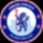 Chelsea_Sky_2019.png