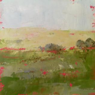 paysage 14