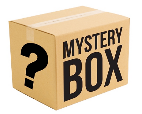 Prodigy Mystery Box(First Class-Collectibles)