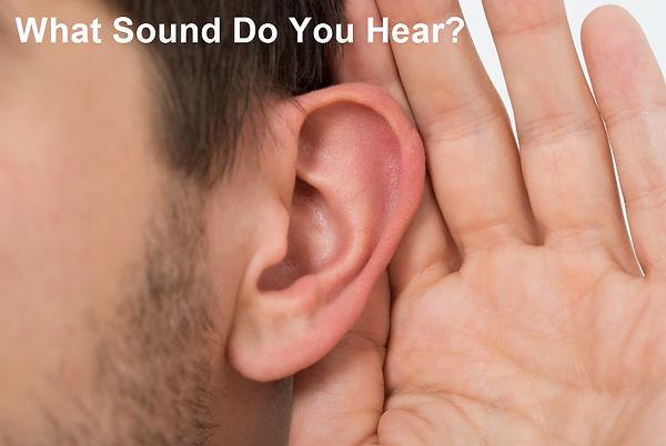 What Sound Do You Hear?