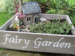 fairy-garden-kit-1