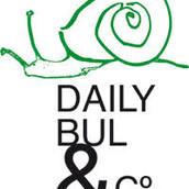 Centre Daily-Bul & C°