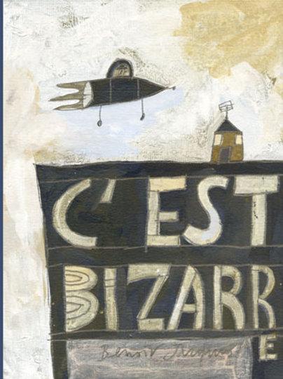 Benoit Jacques - C'est bizarre
