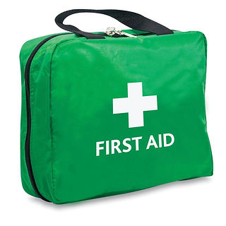 green-two-in-one-first-aid-bag.jpg