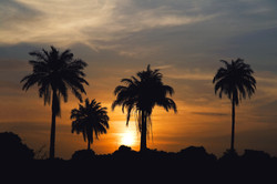 Sunset in Gambia