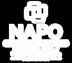 NAPO-Minnesota-Chapter-White-Logo.png
