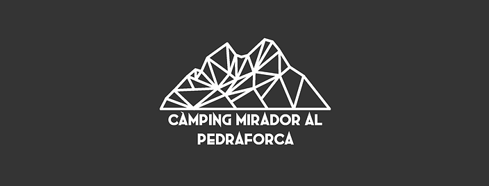 logo_pàginaweb.png