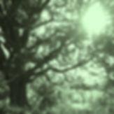 sommarkassetten 7_.jpg