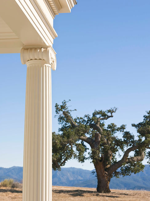 Detail of an Ionic column with a view of