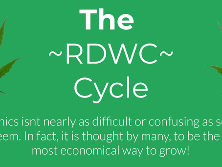 RDWC.. The Way Of the Future