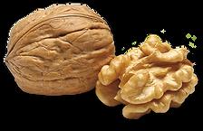 walnuts 400px.png