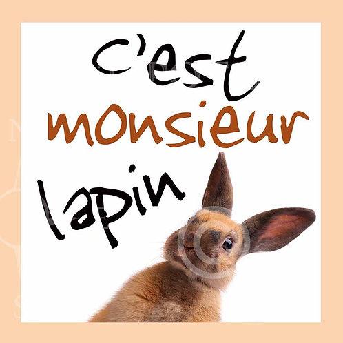 Monsieur Lapin
