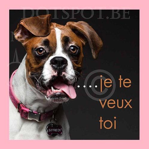 Dog Je Te Veux