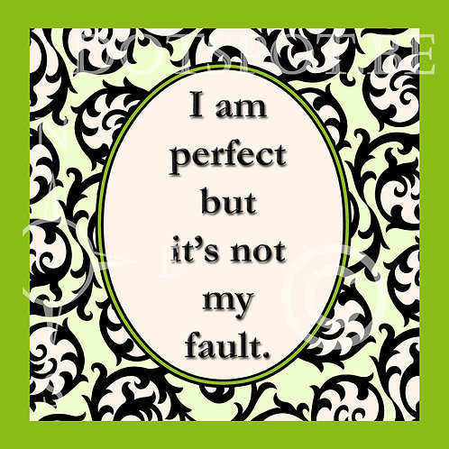 I Am Perfect But It's Not My Fault